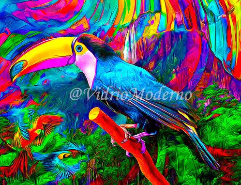 Tucán de colores