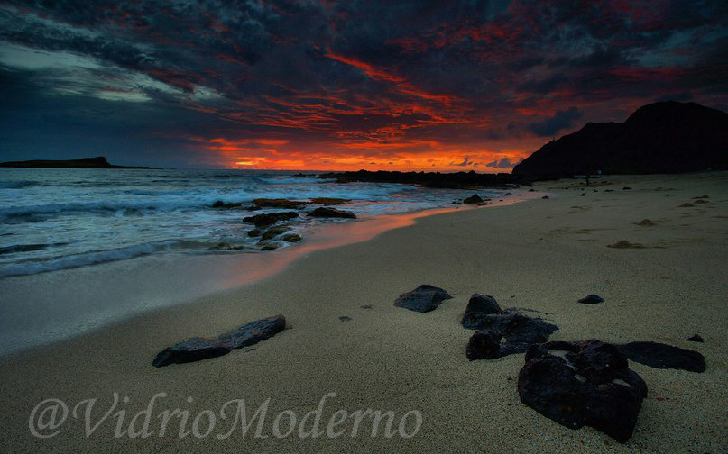 Playa 19