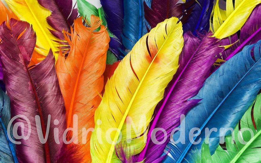 Plumario de colores