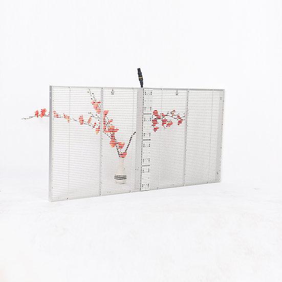 Transparent LED Series JT