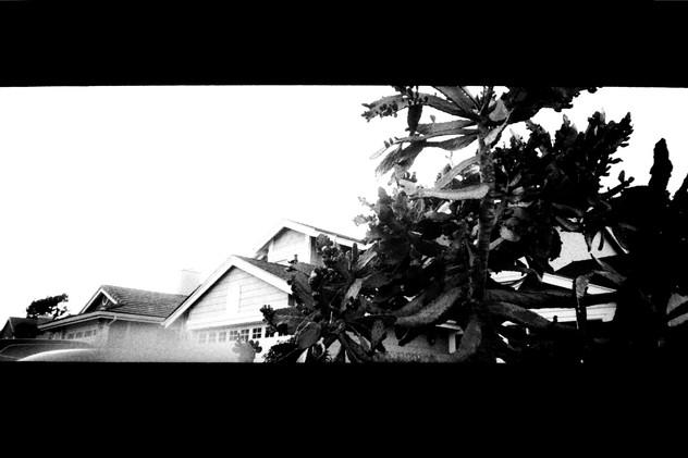 """Tree House"""