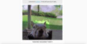 Screen Shot 2020-05-28 at 10.30.42 PM.pn