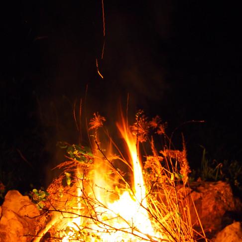 Očistné jarní pálení