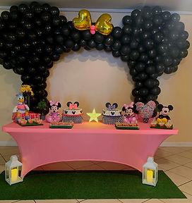 Twins Minnie Mouse Birthday
