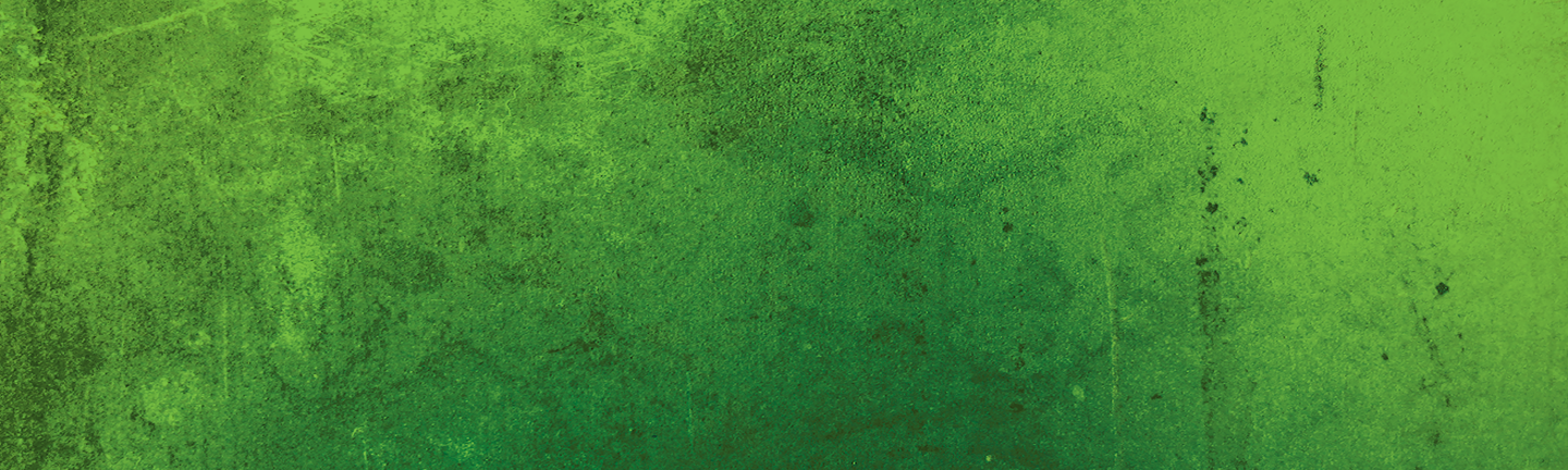 Green Web Banner.png