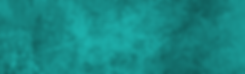 BS Web Banner.png