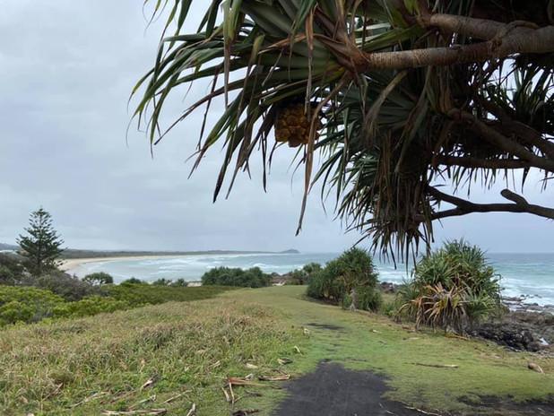 Cabarita Beach Photo 3