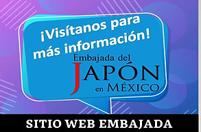 Sitio Web Embajada
