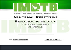 Abnormal repetitive Behaviour.JPG