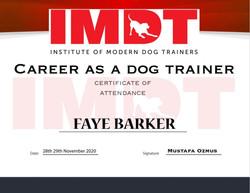 IMDT Career as a Dog Trainer.jpg