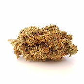 cbd wholesale, cbd hashish, cbd wholesaler, cbd uk , cbd pologne, cbd usa, weed , wholesaler cbd , wholesaler weed, wolrd cdb , brasil cbd