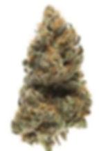 weed , cbd , smoke, buds, CBG, 420, hemp, legal, wolrd , can