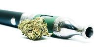 CBD weed, cannabis , weed , CBG, Hashich CBD , OIl CBD , Extraction CBD , full spectrum , total spectrum, indica, sativa, wholesaler, wholesale, en gros , legale cannabis. cannabis light , amnesia, super skunk, super bud, gelato cbd, gorilla glue indoor cbd, bubul gum cbd , hight level cbd, worldwild, charlotte web , cheese cbd,buds, edible,cosmetic cbd, watersolupe cbd