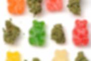 CBD weed, cannabis , weed , CBG, Hashich CBD , OIl CBD , Extraction CBD , full spectrum , total spectrum, indica, sativa, wholesaler, wholesale, en gros , legale cannabis. cannabis light , amnesia, super skunk, super bud, gelato cbd, gorilla glue indoor cbd, bubul gum cbd , hight level cbd, worldwild, charlotte web , cheese cbd,buds, edible,cosmetic cbd, watersolupe cbd,cream cbd, genetics ,clones, shampoo cbd,edible cbd, chocolate cdb