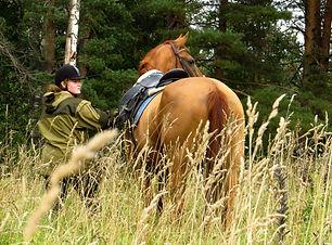 horse rinding is St.Petersburg