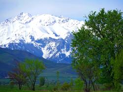 Киргизия, Тянь-Шань