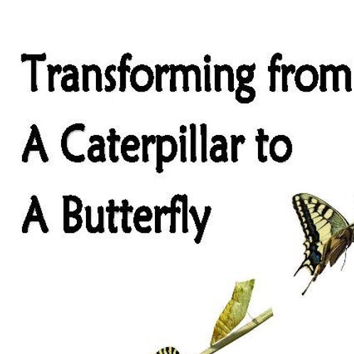 Transforming from a caterpillar to a butterfly