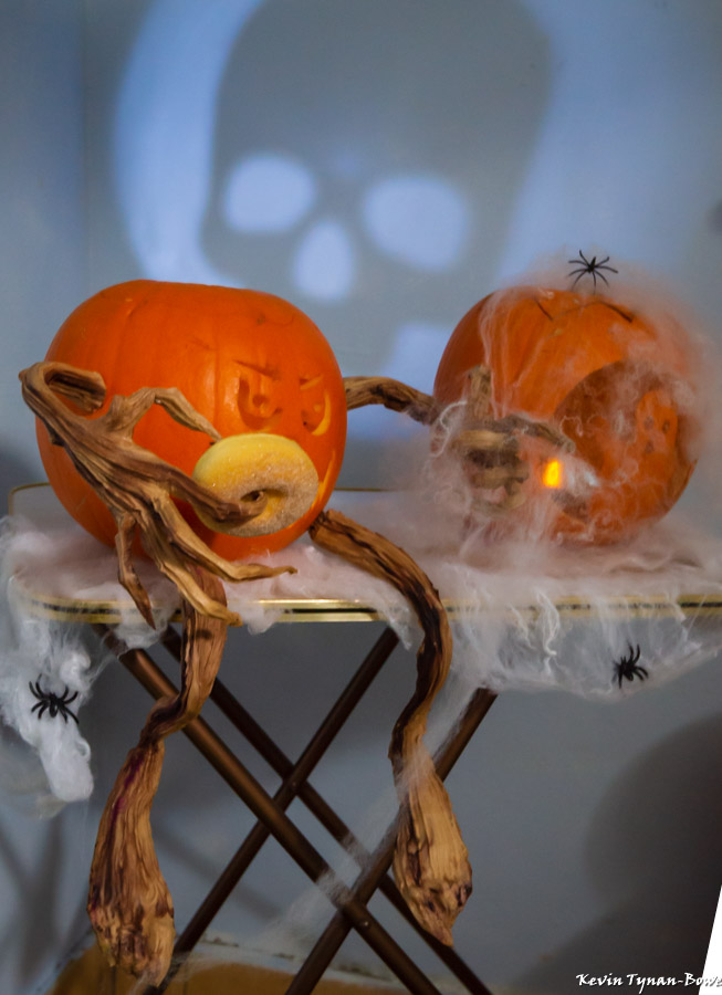 Halloween & Bulb Planting 2018