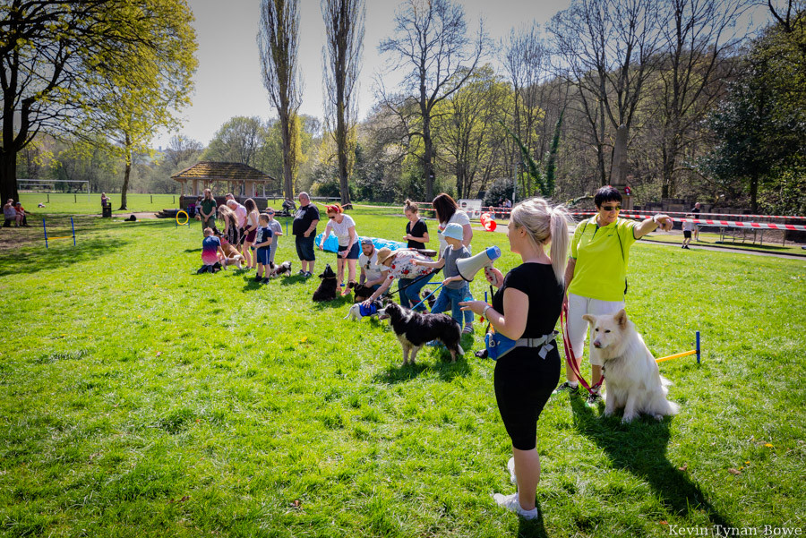 Her first dog competition held at Easter in Holmes Park and the Luddendenfoot Community Centre