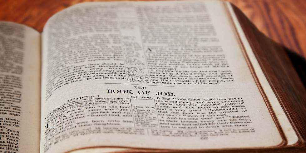 Online Bible Study: The Book of Job