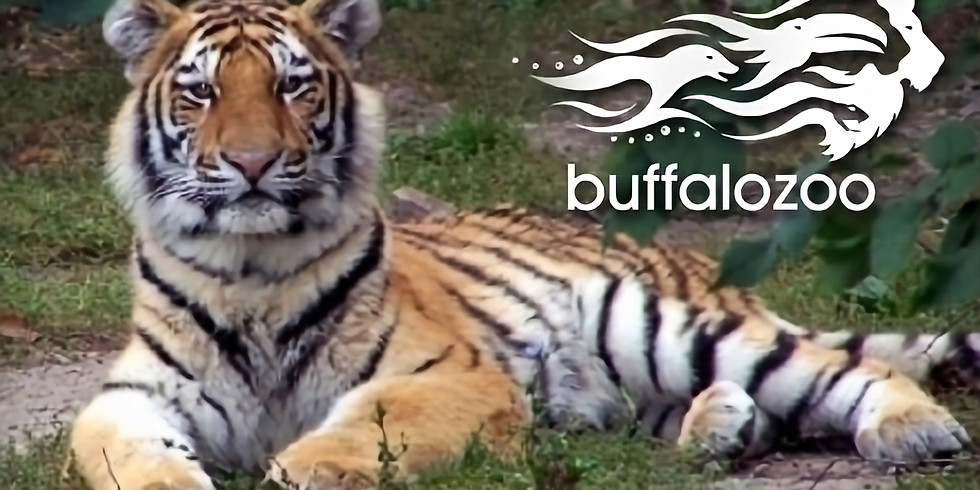 Educational Field Trip - Buffalo Zoo