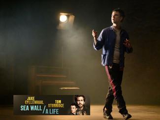 Sea Wall   A Life