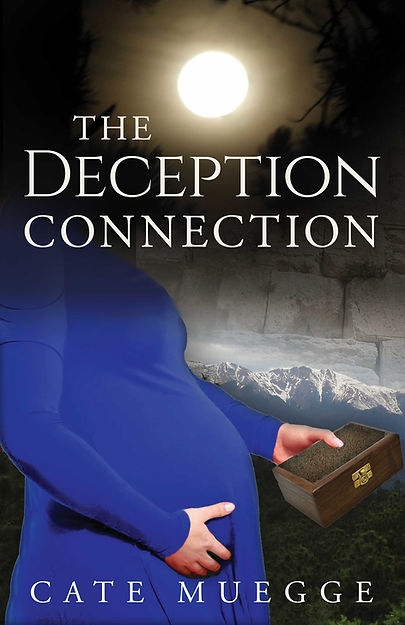 TheDeceptionConnection_ebook-cover_2021-06-11.jpg