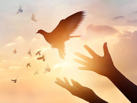 Forgiveness vs. Restoration