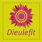 logo de la ville de DIeulefit