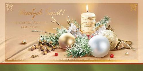 Secular Christmas Card DL