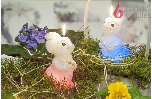 Bunny With Diode