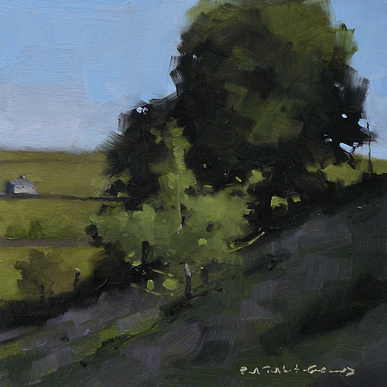 2 summer trees in afternoon light. Shaded foreground. Painting by Paul Talbot-Greaves