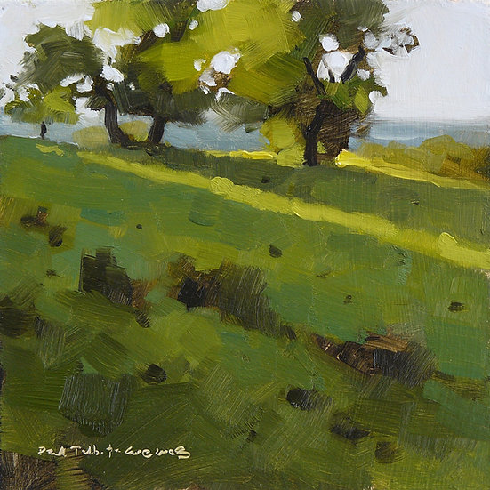 Trees in a park. Long cast shadows from afternoon sun. Painting by Paul Talbot-Greaves