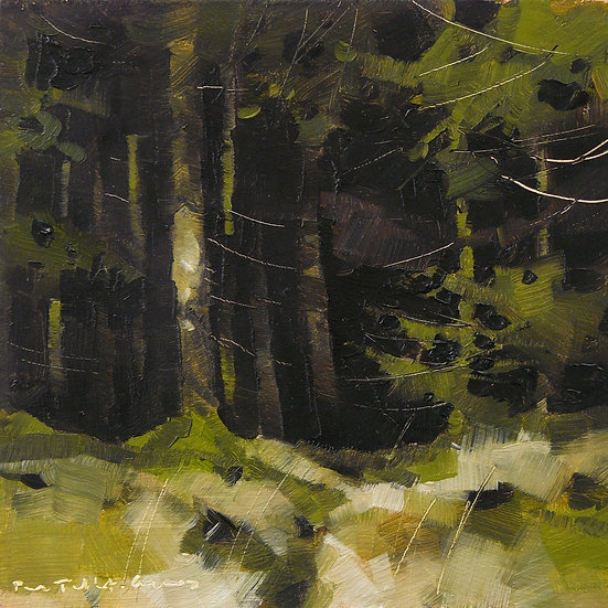 Dark forestry, sunny and bright in foreground. Painting by Paul Talbot-Greaves