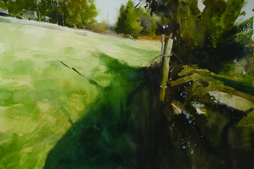 Green summer field and rich shadows on a sunny day. Painting by Paul Talbot-Greaves