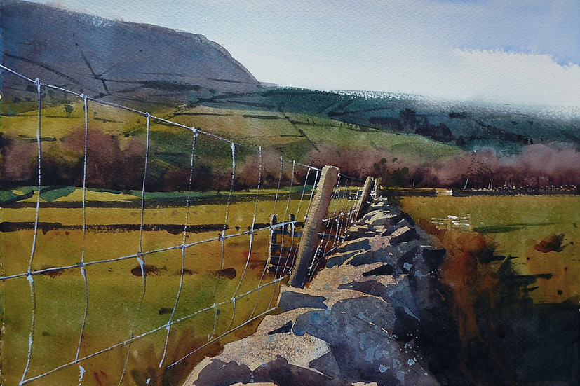 Warm light. Wall leading to Pendle Hill. Painting by Paul Talbot-Greaves