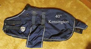 40-in-Kens-W.jpg
