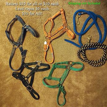 Lg-Horse-Halters-ropesW.jpg