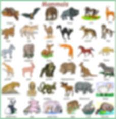 A1-A2 Vocab Bank 11 - Animals - July 14