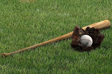 A1-A2 - Interests-Hobbies Baseball bat B