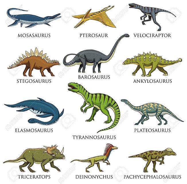 Dinosaur Species - -hand-drawn-vector-il