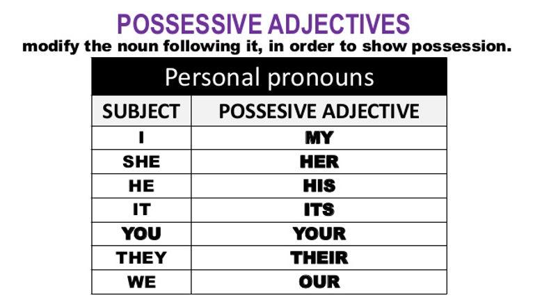 A1-A2 Grammar Act - possessive-adjective
