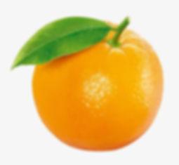 Oange Fruit Image for Web Site - Dec 10