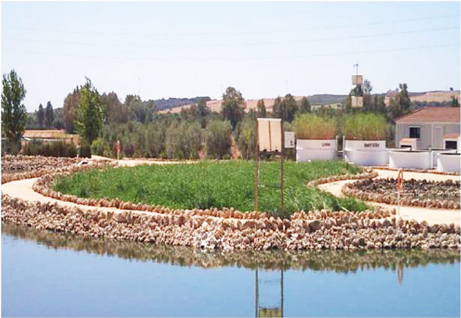 Recycled tipe WWTP (Lagooning)