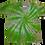 Thumbnail: Toddler 4T Burst Spiral Shirt