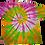Thumbnail: Kid's Medium Four Color Two Spiral Shirt