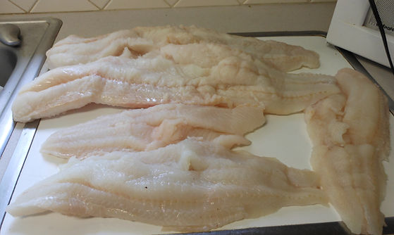processed fillet of fish