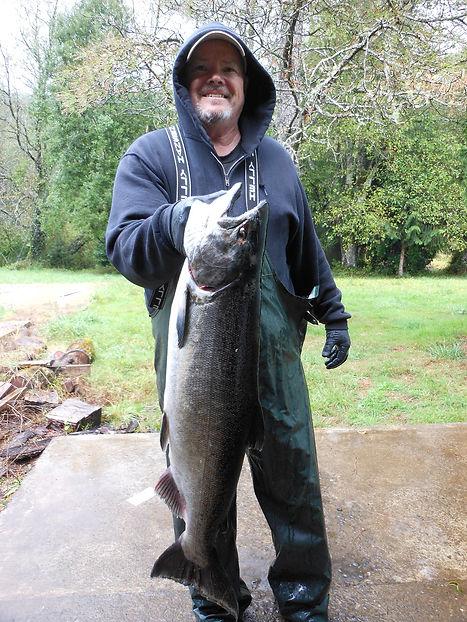 King Chinook salmon fishing big catch.
