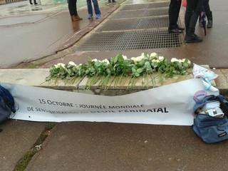 Journée mondiale de sensibilisation sur le deuil périnatal - l'APEHDia marche à Lyon