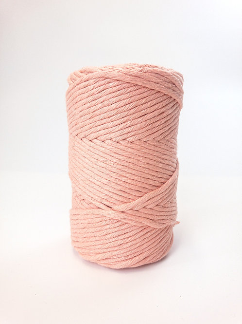 Coral Baskin |  Recycled Single Ply 100 meters / 500g